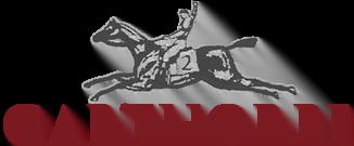 Garthorpe Logo