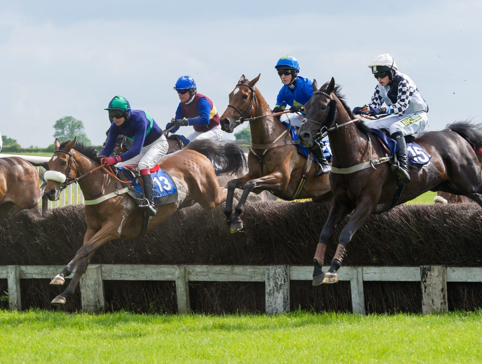 Meynell and South Staffs Point to Point