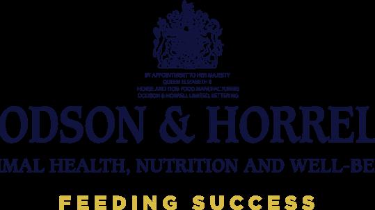 Dodson & Horrell Primary Logo Blue