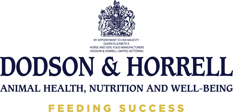 Dodson & Horrell Primary Logo Blue